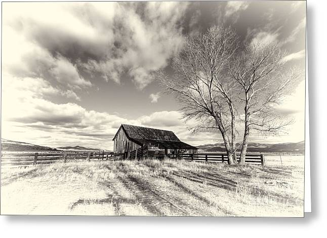 Washoe County Greeting Cards - Twaddle Ranch Barn BW Greeting Card by Dianne Phelps