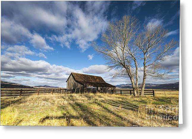Washoe County Greeting Cards - Twaddle Ranch Barn Greeting Card by Dianne Phelps