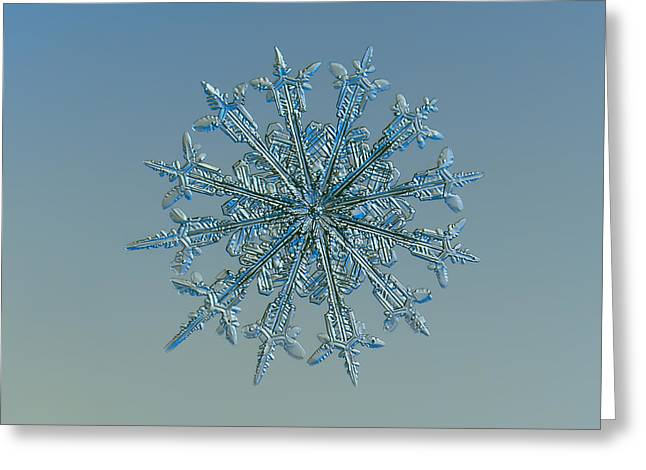 Snowflake Greeting Cards - Snowflake photo - Twelve months Greeting Card by Alexey Kljatov