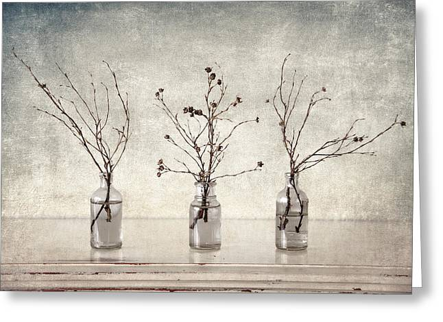 Grungy Greeting Cards - Twigs in Bottles Greeting Card by Carol Leigh