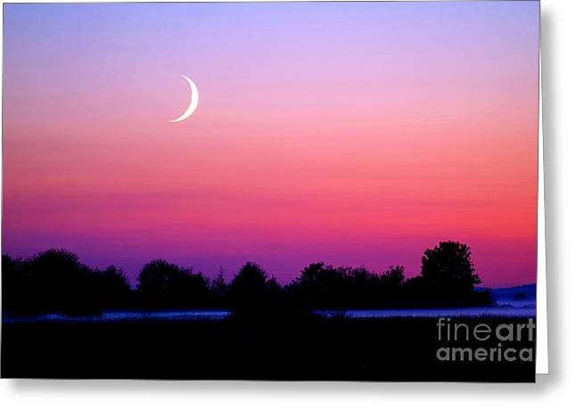 Man In The Moon Greeting Cards - Twilight And Crescent Moon - Lummi Bay Greeting Card by Douglas Taylor