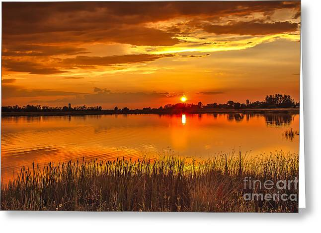 Treasure Valley Greeting Cards - Twilight At The Best Greeting Card by Robert Bales