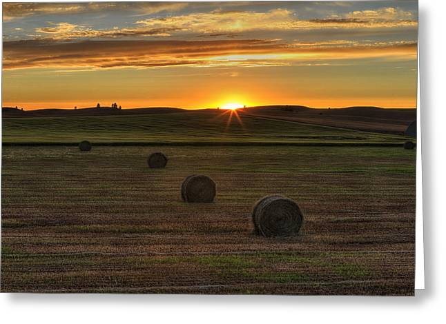Hay Bale Greeting Cards - Twilight Bales Greeting Card by Mark Kiver