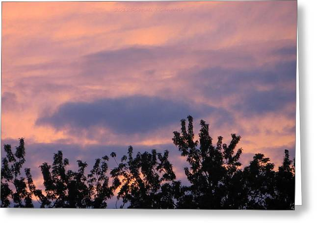 A Summer Evening Greeting Cards - Twilight Beauty Greeting Card by Sonali Gangane
