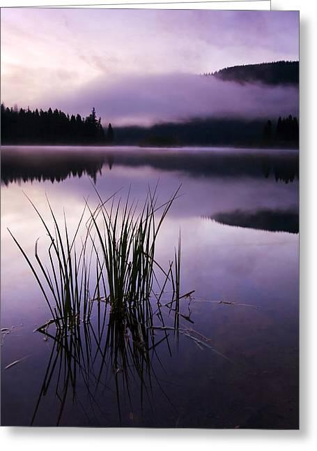 Fog Rising Greeting Cards - Twilight Glow Greeting Card by Mike  Dawson