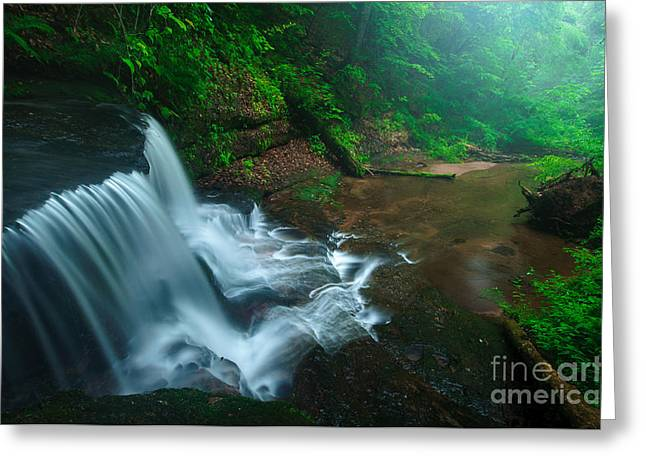 Wild Orchards Greeting Cards - Twilight on Spruce Glen Falls Greeting Card by JG Coleman