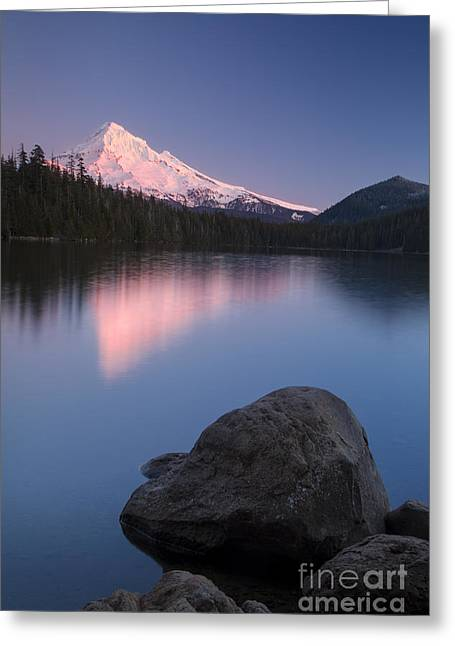 Fir Trees Greeting Cards - Twilight over Mt Hood Greeting Card by Brian Jannsen