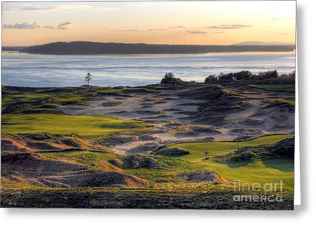University Place Greeting Cards - Twilight Paradise - Chambers Bay Golf Course Greeting Card by Chris Anderson