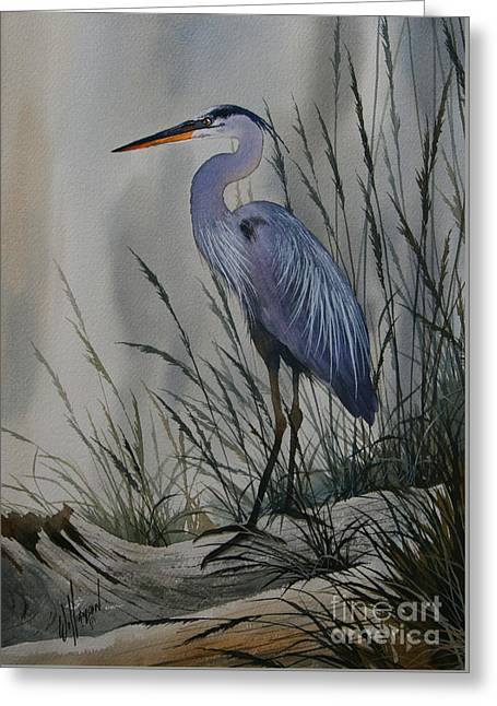 Shore Bird Print Greeting Cards - Twilight Shore Greeting Card by James Williamson