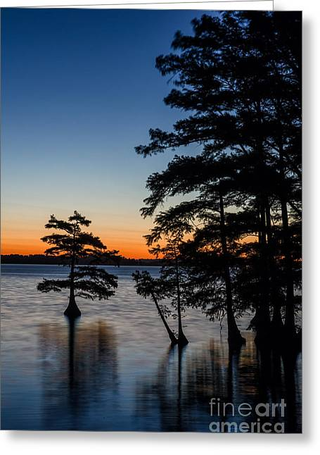Reelfoot Lake Greeting Cards - Faded Blue Greeting Card by Anthony Heflin
