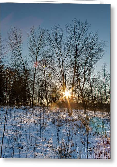 Nature Center Greeting Cards - Twilight Spark Greeting Card by Andrew Slater