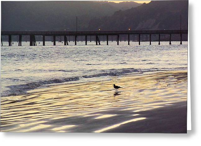 California Beach Art Greeting Cards - Twilights Golden Reflections Greeting Card by Jan Moore