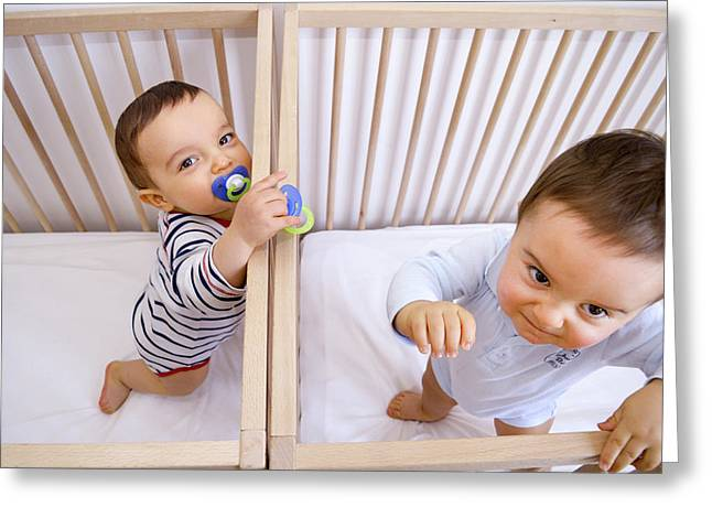 Twin Baby Boys In Their Cots Greeting Card by Aj Photo
