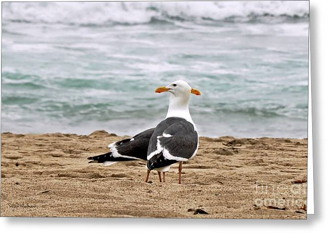 Green Ocean With White Water Greeting Cards - Twin Beaks Greeting Card by Susan Wiedmann