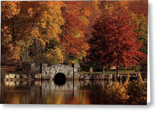 Autumn Scenes Greeting Cards - Twin Brooks Greeting Card by Karol  Livote