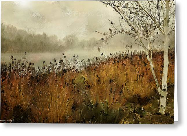 Twin Brooks Park In Fog Greeting Card by Fran Gallogly