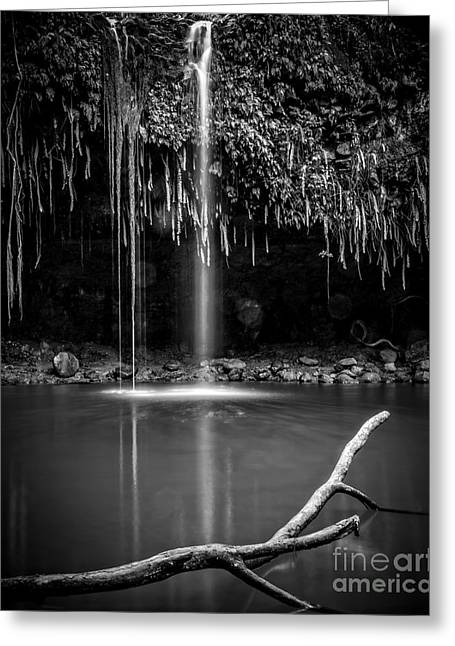 Tropical Island Greeting Cards - Twin Falls Hana Highway Maui Hawaii Black and White Greeting Card by Edward Fielding