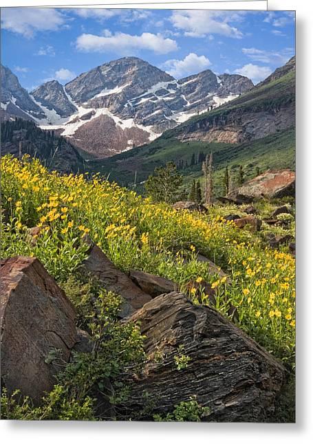 West Fork Greeting Cards - Twin Peaks Wilderness Utah Greeting Card by Utah Images