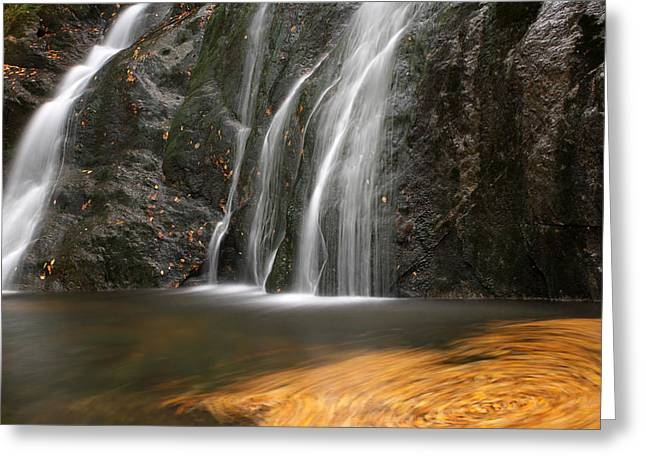 Quite Greeting Cards - Twirling Leaves at Moss Glen Waterfall Greeting Card by Juergen Roth