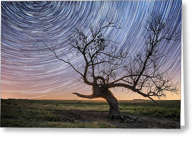 Stars Trail Greeting Cards - Twisted Greeting Card by Aaron J Groen