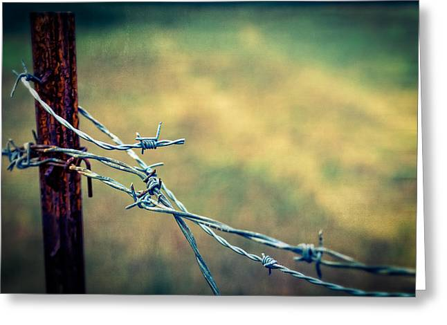 Barbed Wire Fences Greeting Cards - Twisted Greeting Card by Caitlyn  Grasso