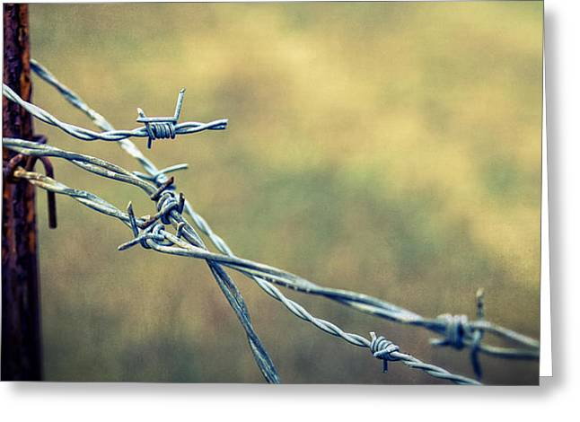 Barbed Wire Fences Greeting Cards - Twisted II Greeting Card by Caitlyn  Grasso