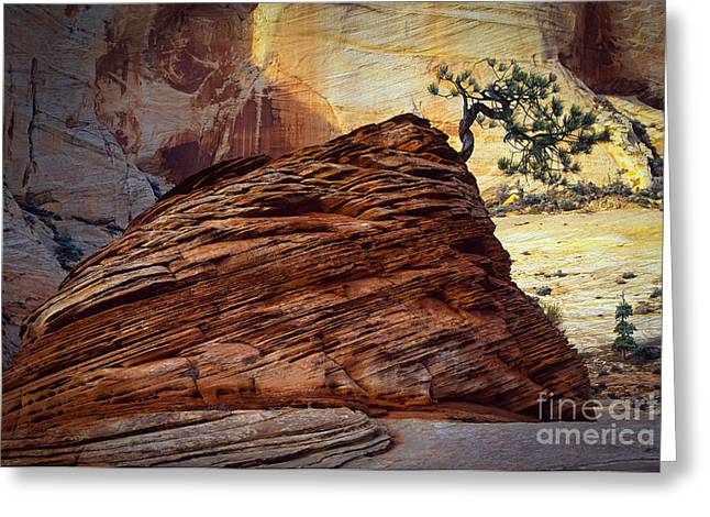 Hoodoos Greeting Cards - Twisted Juniper Greeting Card by Inge Johnsson