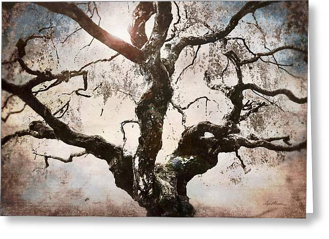 Bent Greeting Cards - Twisted Tree I Greeting Card by April Moen