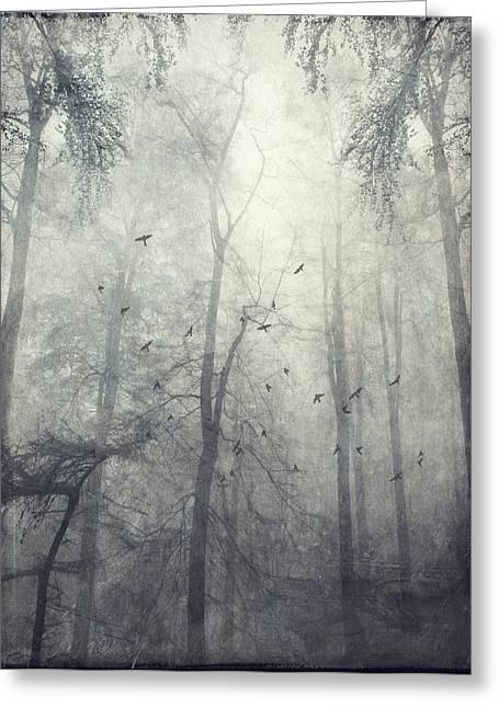 Dirk Wuestenhagen Greeting Cards - Twisted Trees Greeting Card by Dirk Wuestenhagen