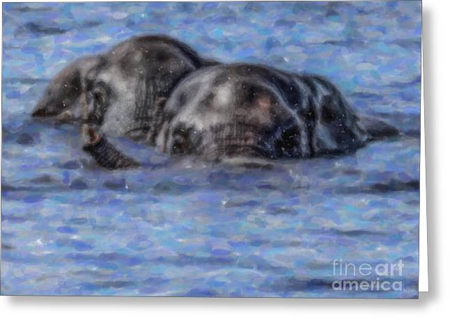 Two African Elephants Swimming In The Chobe River Greeting Card by Liz Leyden