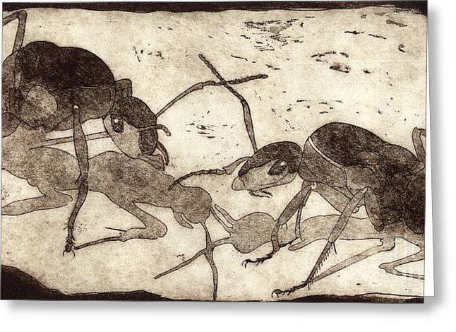 Wild Life Drawings Greeting Cards - Two ants in communication - etching Greeting Card by Urft Valley Art