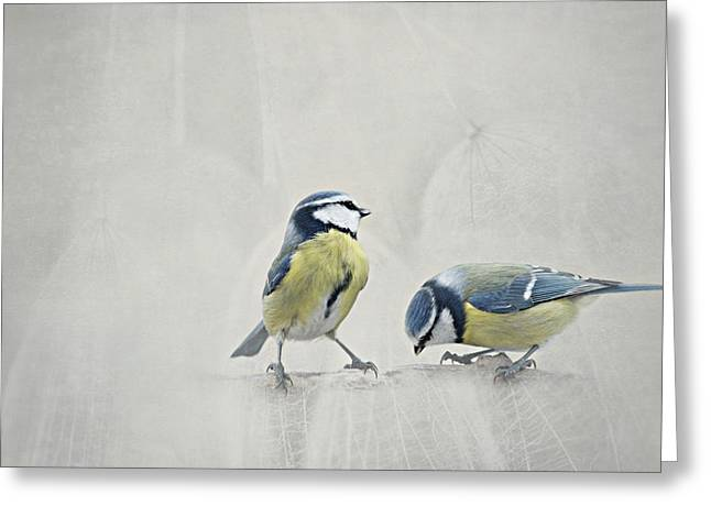 Feeding Mixed Media Greeting Cards - Two Birds Greeting Card by Heike Hultsch