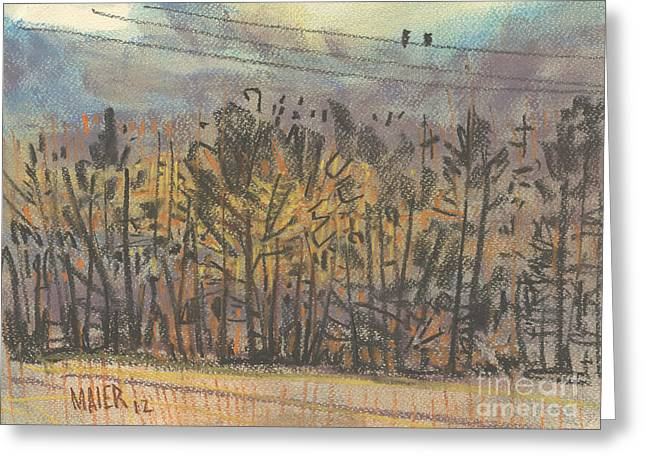 Telephone Wires Greeting Cards - Two Birds on a Wire Greeting Card by Donald Maier