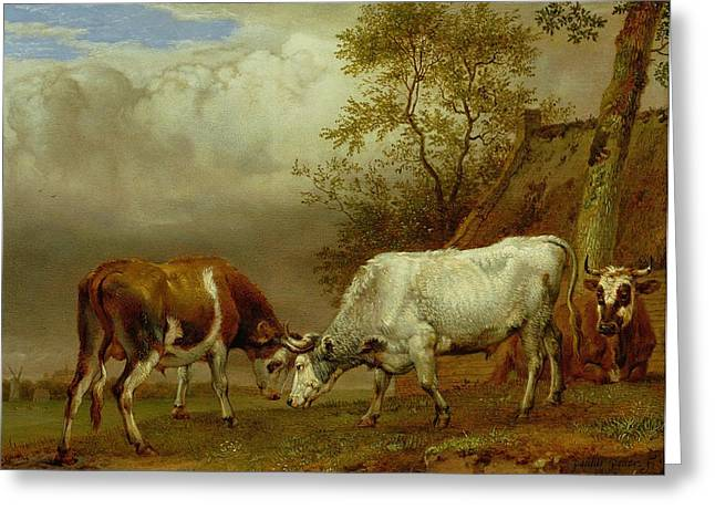 Constricting Greeting Cards - Two Bulls With Locked Horns, 1653 Oil On Board Greeting Card by Paulus Potter