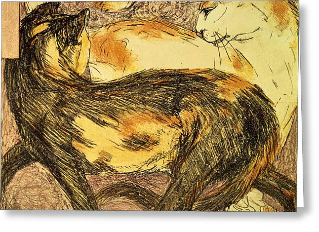 Game Animal Greeting Cards - Two Cats Sketch Greeting Card by Franz Marc