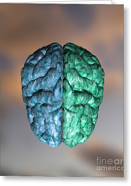 Graphic Digital Art Greeting Cards - Two-colored Brain Greeting Card by Mike Agliolo