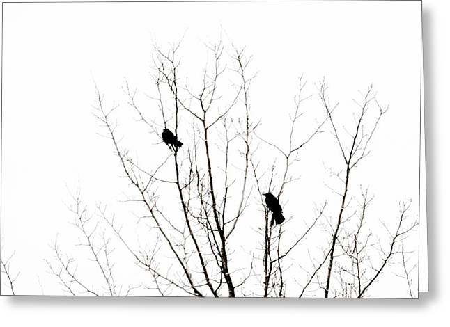 Two Crows Greeting Cards - Two Crows Greeting Card by Marilyn Hunt