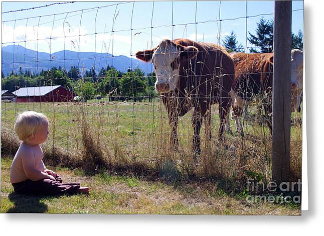 Happy Acres Farm Greeting Cards - Two Curious Greeting Card by Erin Baxter