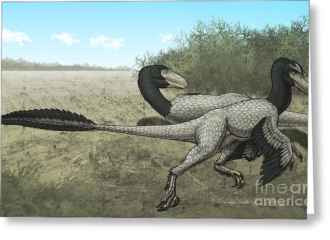 Dromaeosaurid Greeting Cards - Two Dromaeosaurus Dinosaurs Sunbathing Greeting Card by Vitor Silva