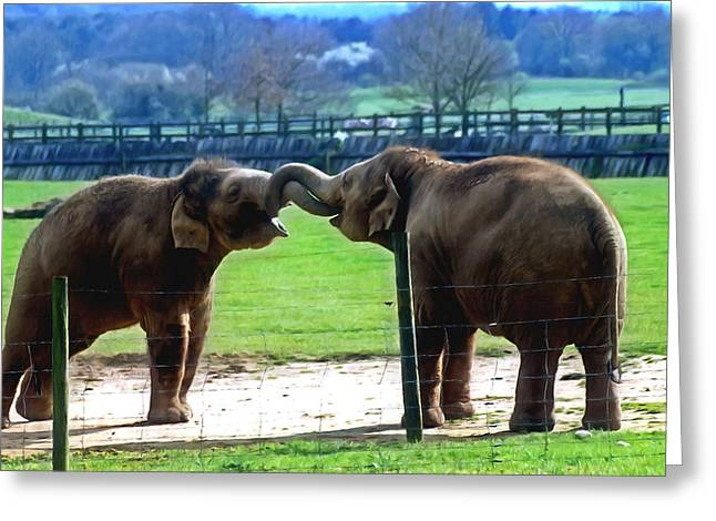 Branch Greeting Cards - Two elephants Greeting Card by Lanjee Chee