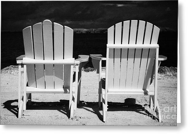 Sea View Greeting Cards - Two Empty Sun Loungers On Private Beach Islamorada Florida Keys Usa Greeting Card by Joe Fox