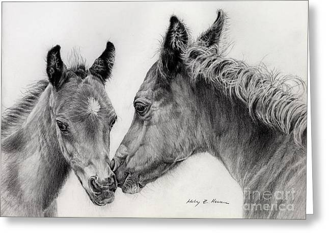 Black And White Drawing Greeting Cards - Two Foals Greeting Card by Hailey E Herrera
