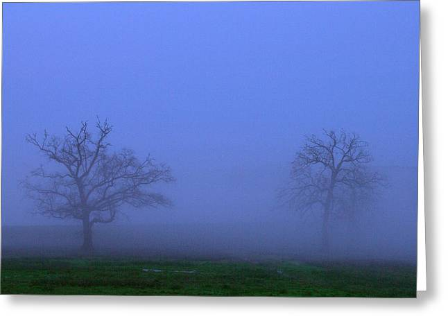 Amazing Sunset Greeting Cards - Two Foggy Trees Greeting Card by Brian Harig
