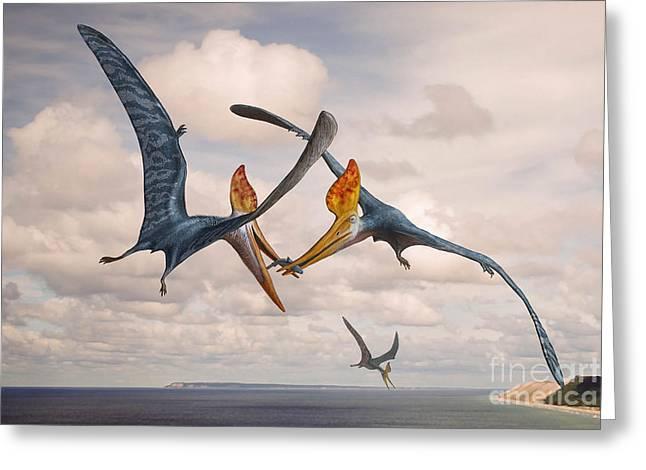 Two Geosternbergia Pterosaurs Fighting Greeting Card by Sergey Krasovskiy