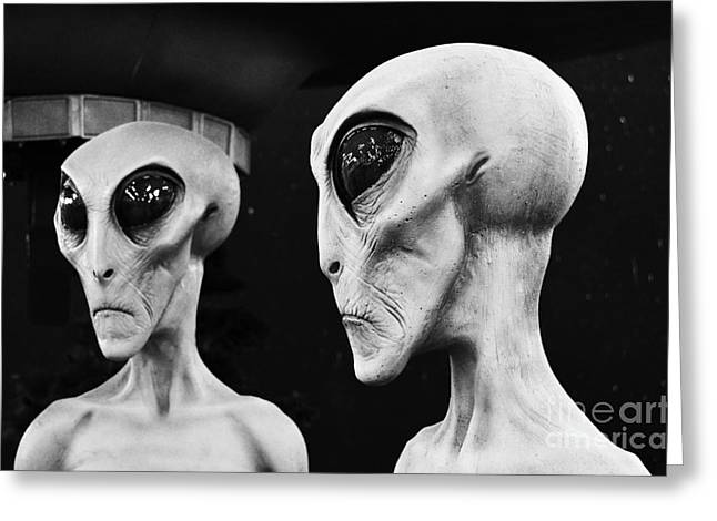 Are We Alone Greeting Cards - Two Grey Aliens Science Fiction Portrait Black and White Greeting Card by Shawn O