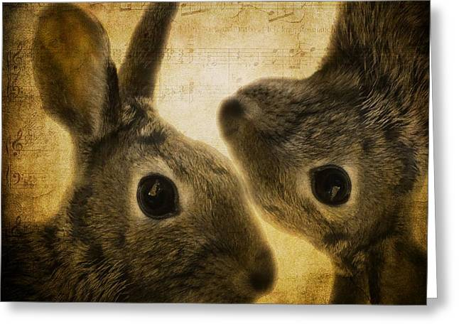 Hare Greeting Cards - Two Hares Greeting Card by Gothicolors Donna Snyder
