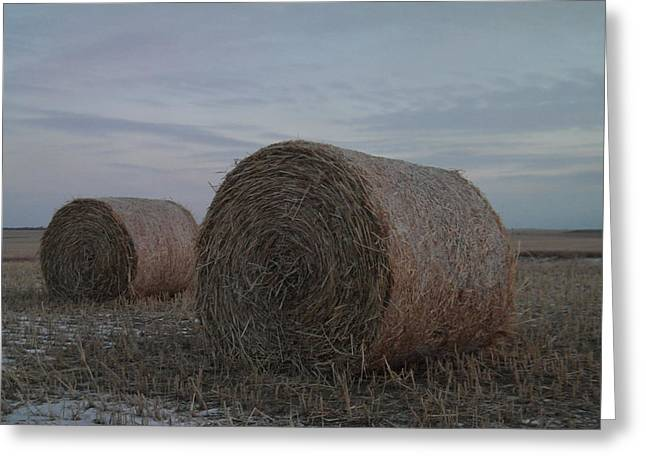 Bale Greeting Cards - Two hay bales Greeting Card by Jeff  Swan