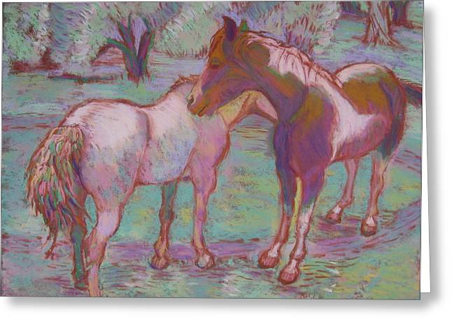 Marin County Greeting Cards - Two Horses Nuzzling Lagunitas Greeting Card by Pamela Fox