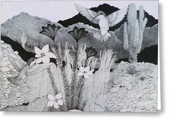Flower In Pen And Ink Greeting Cards - Two Hummingbirds in Arizona Greeting Card by Tammie Temple