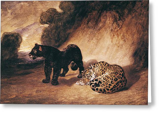 Jaguars Greeting Cards - Two Jaguars From Peru Wc On Paper Greeting Card by Antoine Louis Barye